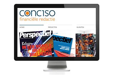 WordPress website ~ Conciso